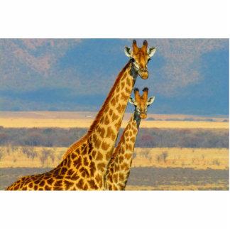 Giraffe Photo Sculptures