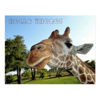 Giraffe Postcard / Hello there!