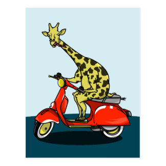 Giraffe riding a red scooter postcard