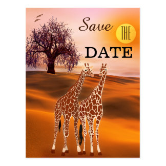 Giraffe Safari Zoo Save the Date Postcard