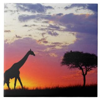 Giraffe silhouetted at sunrise, Giraffa Ceramic Tile