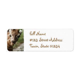 Giraffe Snack Return Address Label
