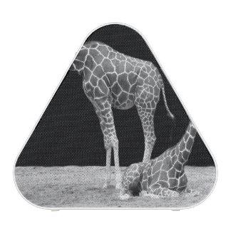 giraffe speaker