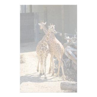 giraffe stationary stationery