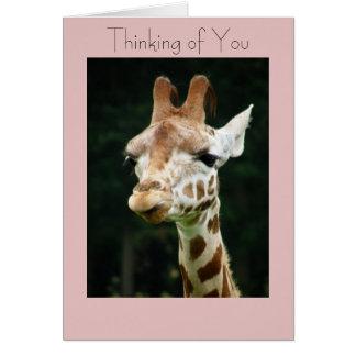 Giraffe Thinking of You Friendship Card