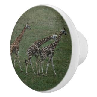 Giraffe Triplets Personalize Destiny Destiny'S Ceramic Knob