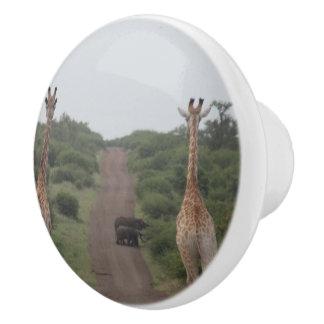 Giraffe Twins Africa Personalize Destiny Destiny'S Ceramic Knob