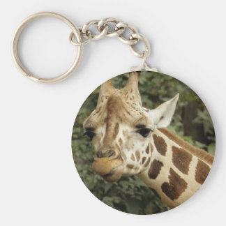 Giraffe Wildlife Photo Key Chains