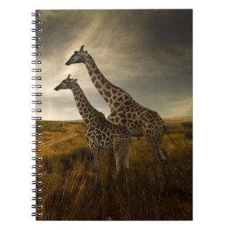 Giraffes and The Landscape Spiral Note Books