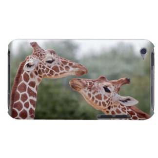 Giraffes in Love iPod Touch Case