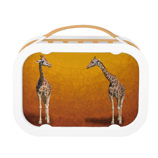 GIRAFFES LUNCH BOXES