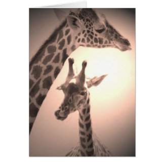 giraffes, mother and child card