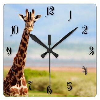 Giraffes Square Wall Clock