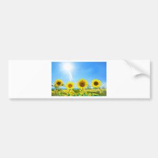 Giraspois (Sunflowers) Bumper Sticker