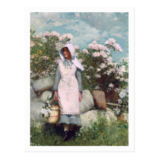 Girl and Laurel by Winslow Homer Postcard