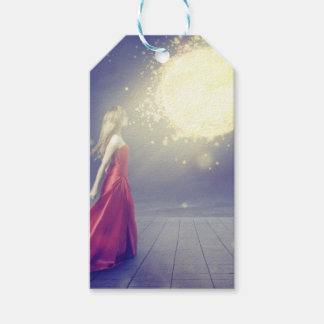 Girl vs. a Meteor Gift Tags