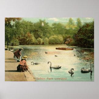 Girls Feeding Swans, Liverpool UK 1904 Vintage Poster