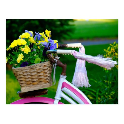 Girls Just Wanna Have Fun, Pink Girls Bicycle Postcards