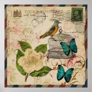 girly french botanical bird rose paris fashion poster