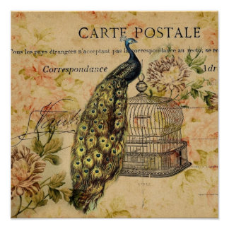 girly trendy peacock floral vintage poster