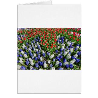 Gisement de fleurs avec les tulipes bleues et les carte de vœux