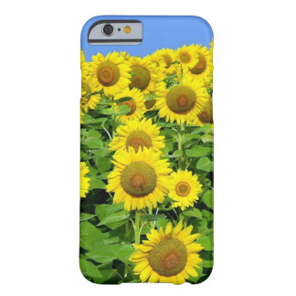 Gisements de tournesol coque barely there iPhone 6