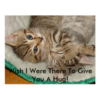 Give A Hug Kitty Postcard