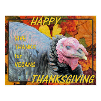 Give Thanks for Vegans Postcard