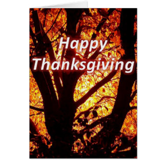 Give Thanks to the Lord 1 Chronicles 16:8 Greeting Card