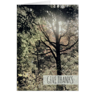 Give Thanks Warm Fall Day Colorful Autumn Forest Card
