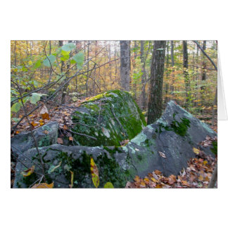 Glacial Boulders Montgomery County Pennsylania Card
