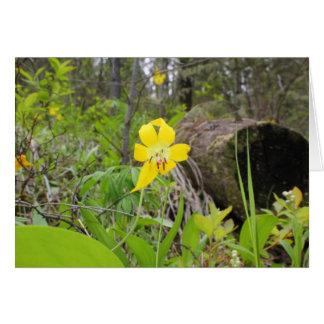 Glacier Lily Card
