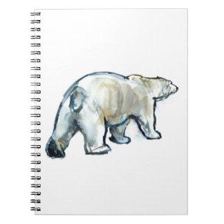 Glacier MInt Notebooks