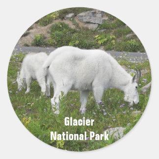 Glacier National Park Mountain Goats Photo Classic Round Sticker