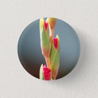 Glad Buds pin