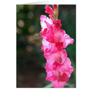 Glad-glad-gladiolus! card