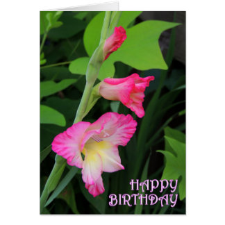 Gladiola Birthday 3 Card