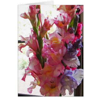 Gladiolas 'Thinking of you card' Card