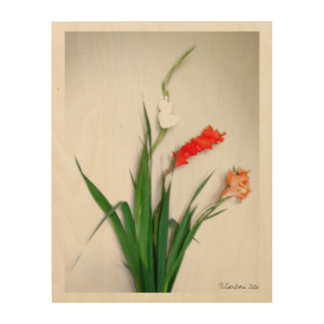 Gladiolus From the Garden. Wood Print