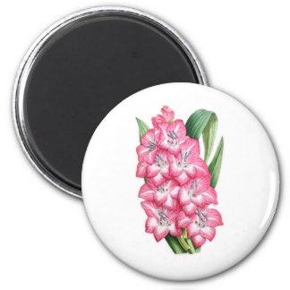 Gladiolus Ulysse 2 Inch Round Magnet