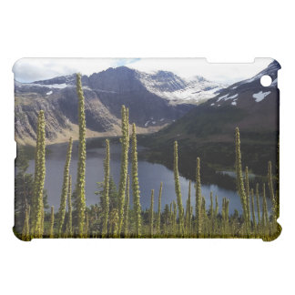 Glaicer National Park Hidden Lake Case For The iPad Mini