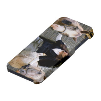 glam horses iPhone 5 cover