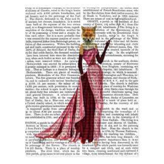 Glamour Fox in Pink Postcard