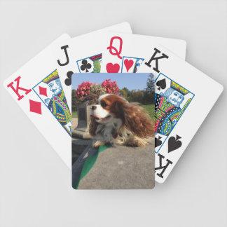 Glamour Shot Poker Deck