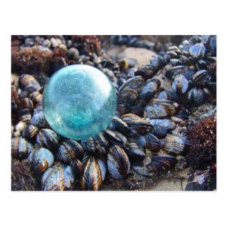 Glass float on blue mussels postcard