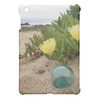 Glass float on the beach iPad mini cases