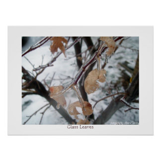 Glass Leaves Poster