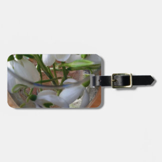 glass of snowdrops luggage tag