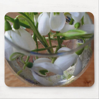 glass of snowdrops mouse pad