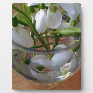 glass of snowdrops plaque
